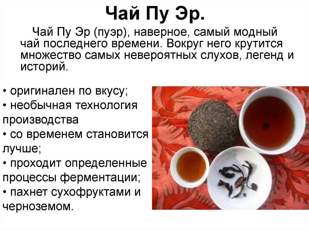 Какой чай полезнее: польза и вред всех видов чая в одной таблице