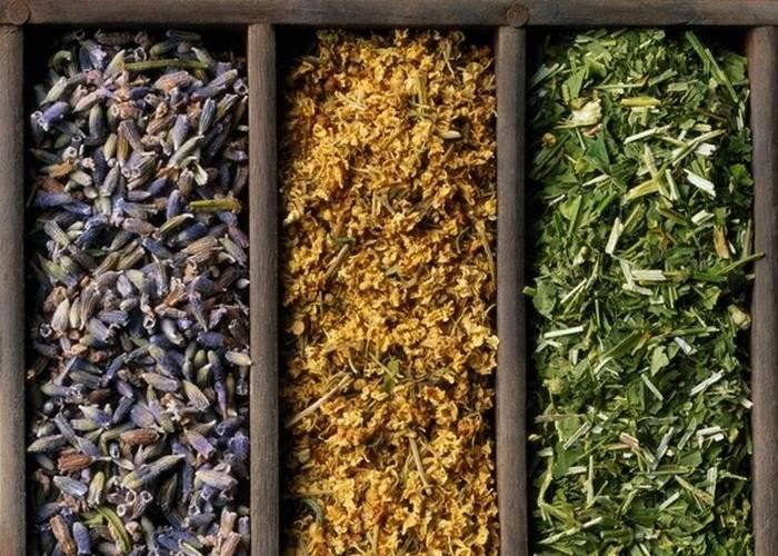 Какие травы собирать в августе для чая. какие травы в августе собирать   здоровье человека