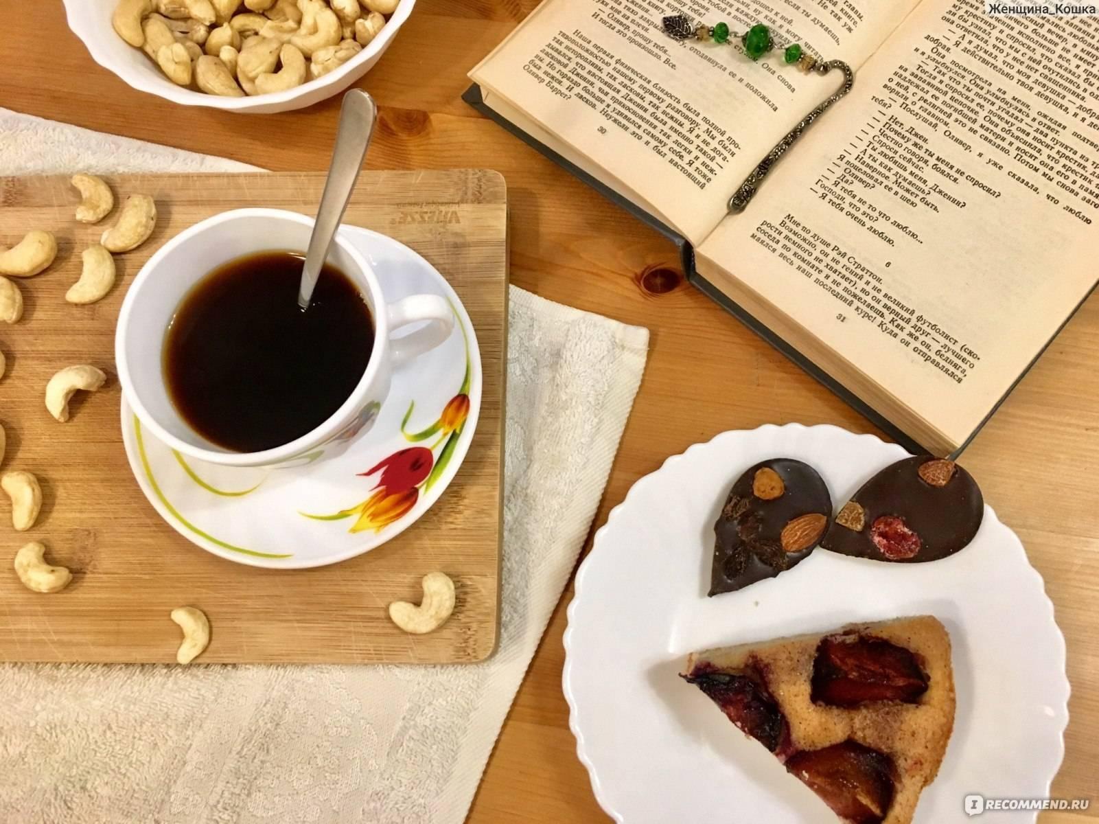 Цикорий: польза и вред, противопоказания, замена кофе