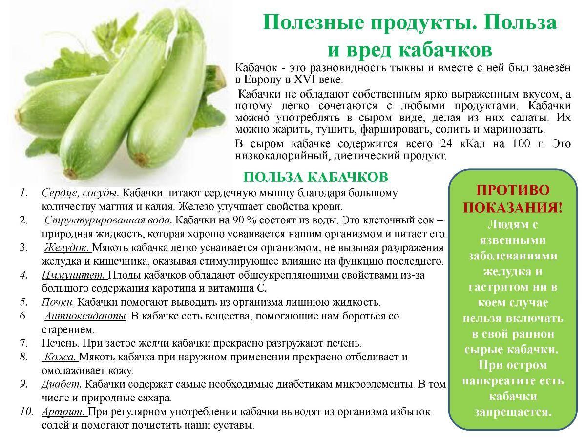 Кабачки - полезные свойства и лечение