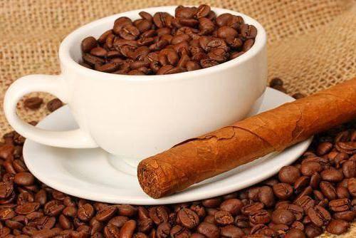 Кубинский кофе: особенности, регионы, виды и популярные сорта