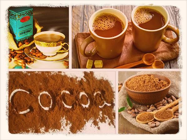 Чем полезно какао: уникальные вещества в составе какао-бобов