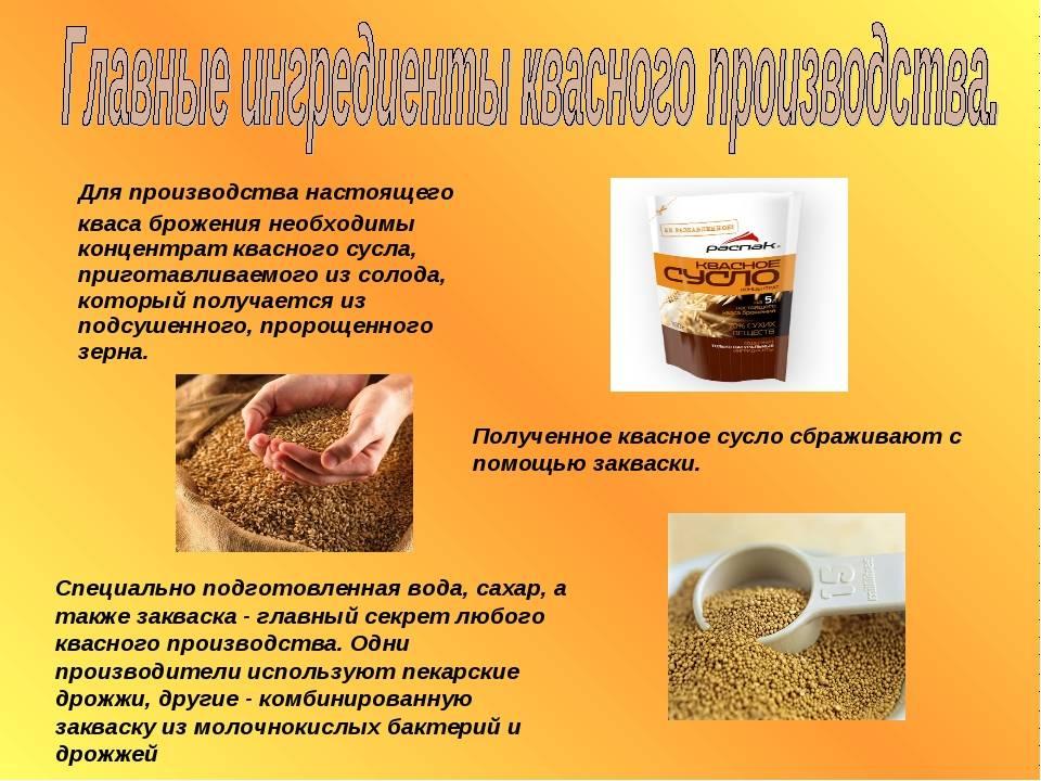 Рисовый квас: польза и вред для организма