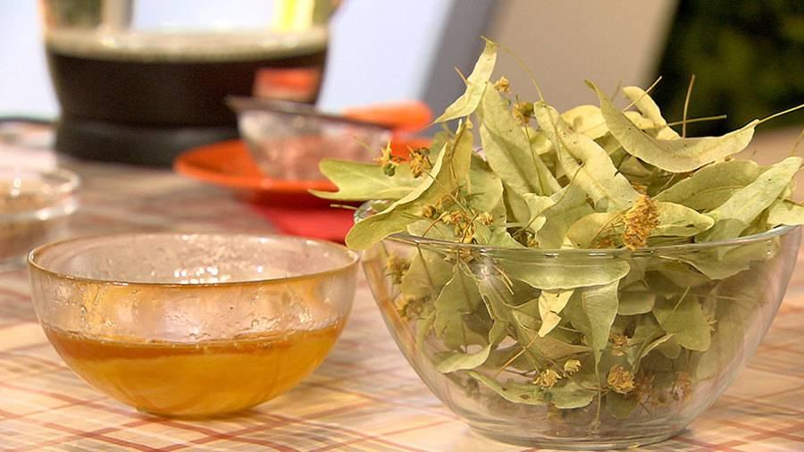 Липа при простуде: способы заваривания чая, полезные свойства
