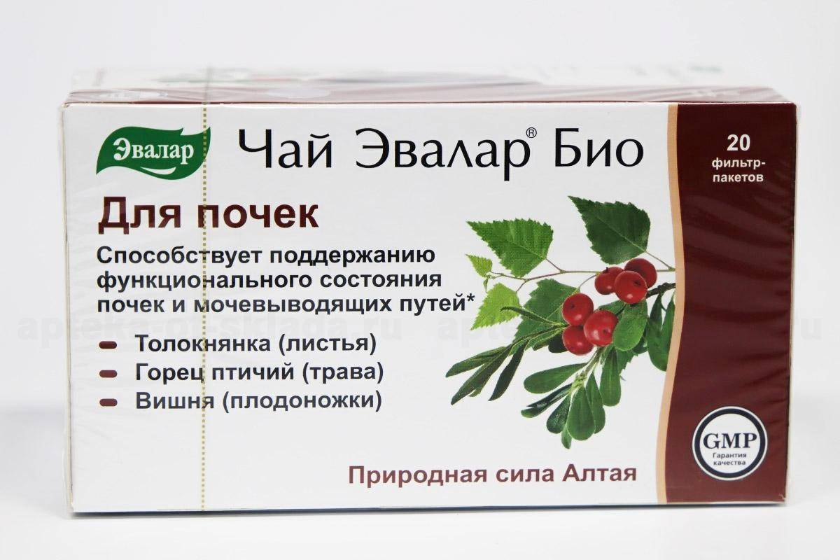 Почечный чай полезные свойства и противопоказания