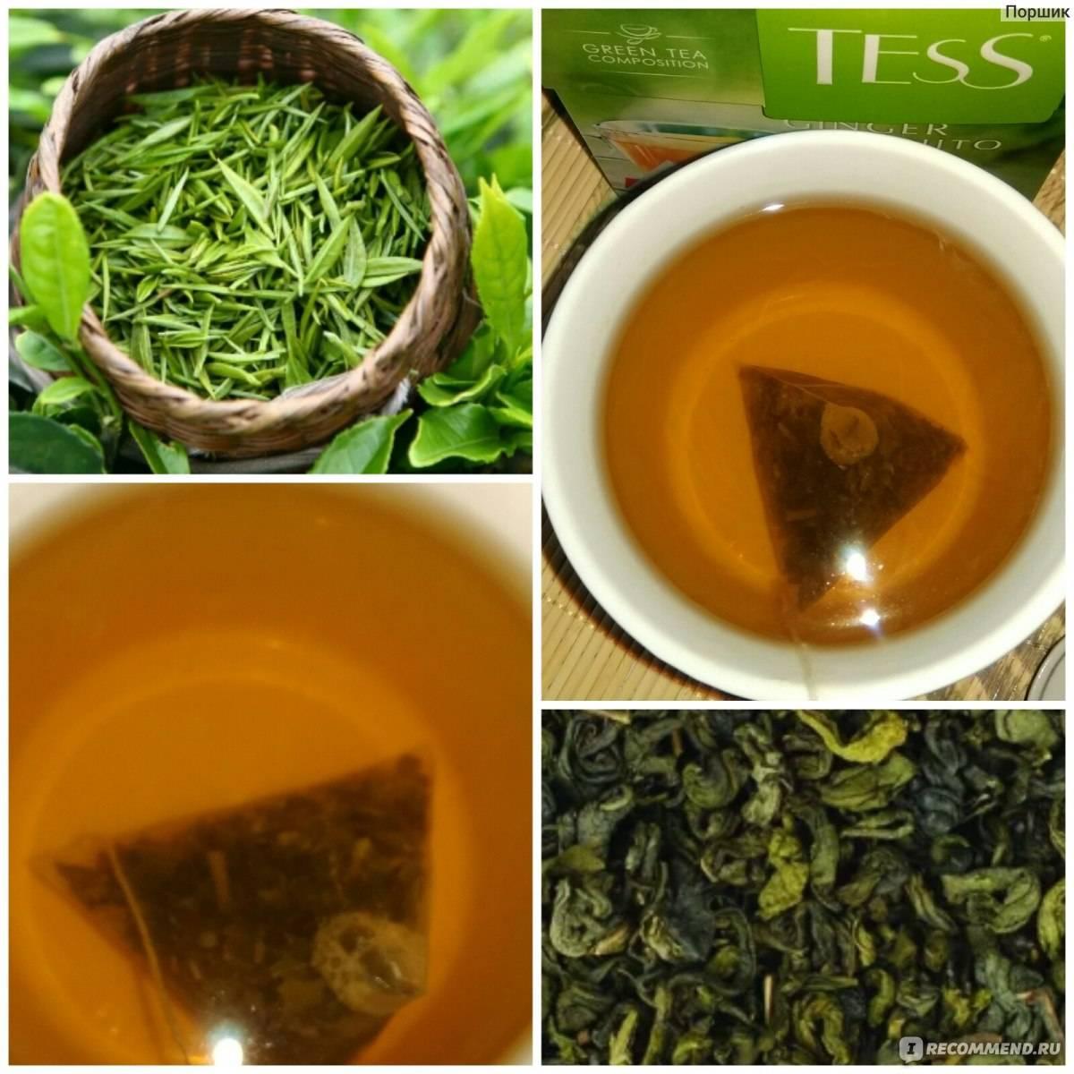 Анисовый чай: полезные свойства и противопоказания
