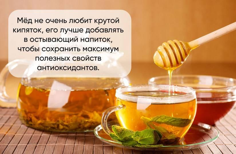 Чай от простуды. лечим простуду вкусными чаями: рецепты, готовые аптечные сборы