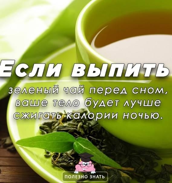Можно ли пить зеленый чай на ночь? | пища это лекарство