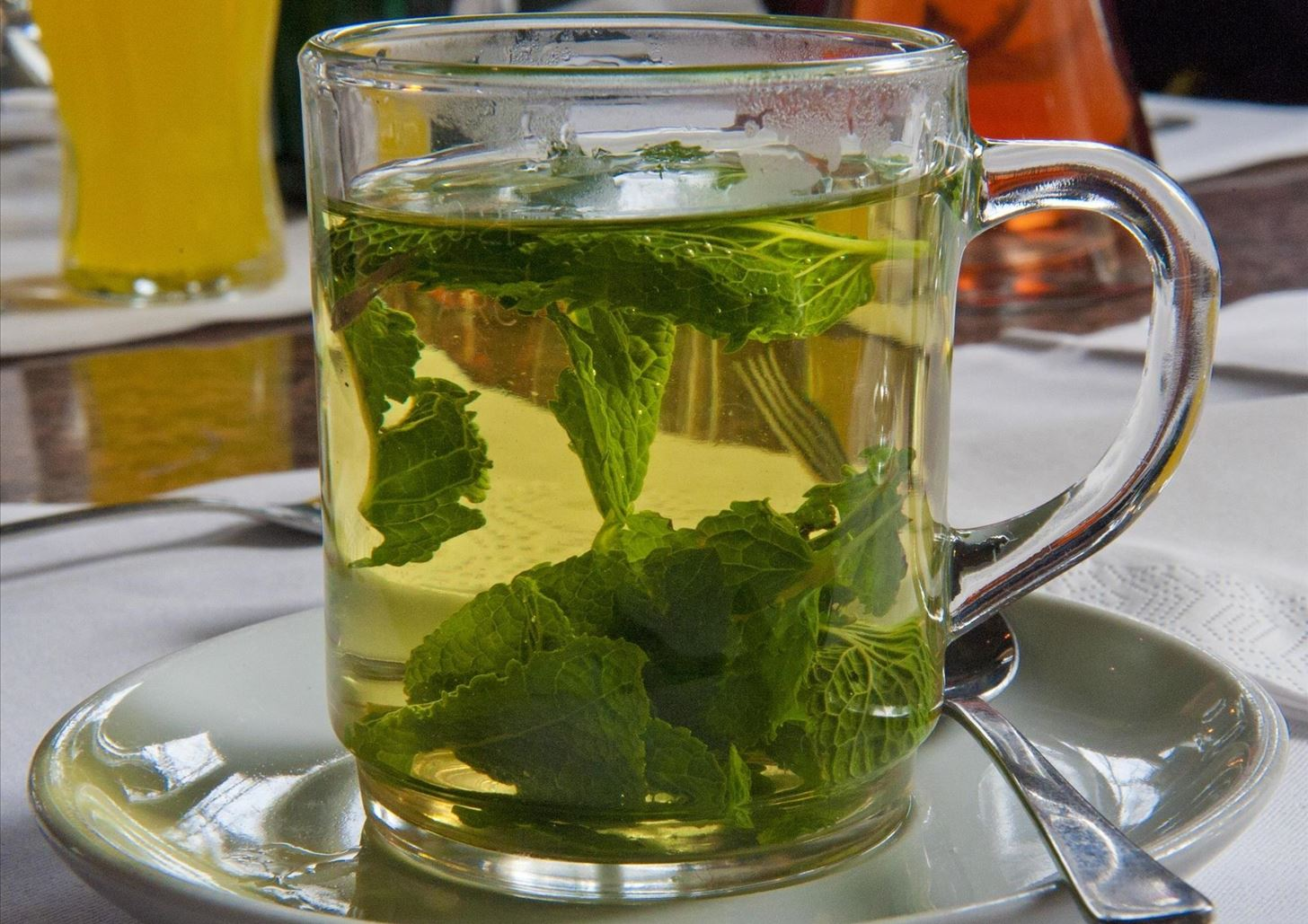 Чай из листьев смородины — польза и вред для здоровья