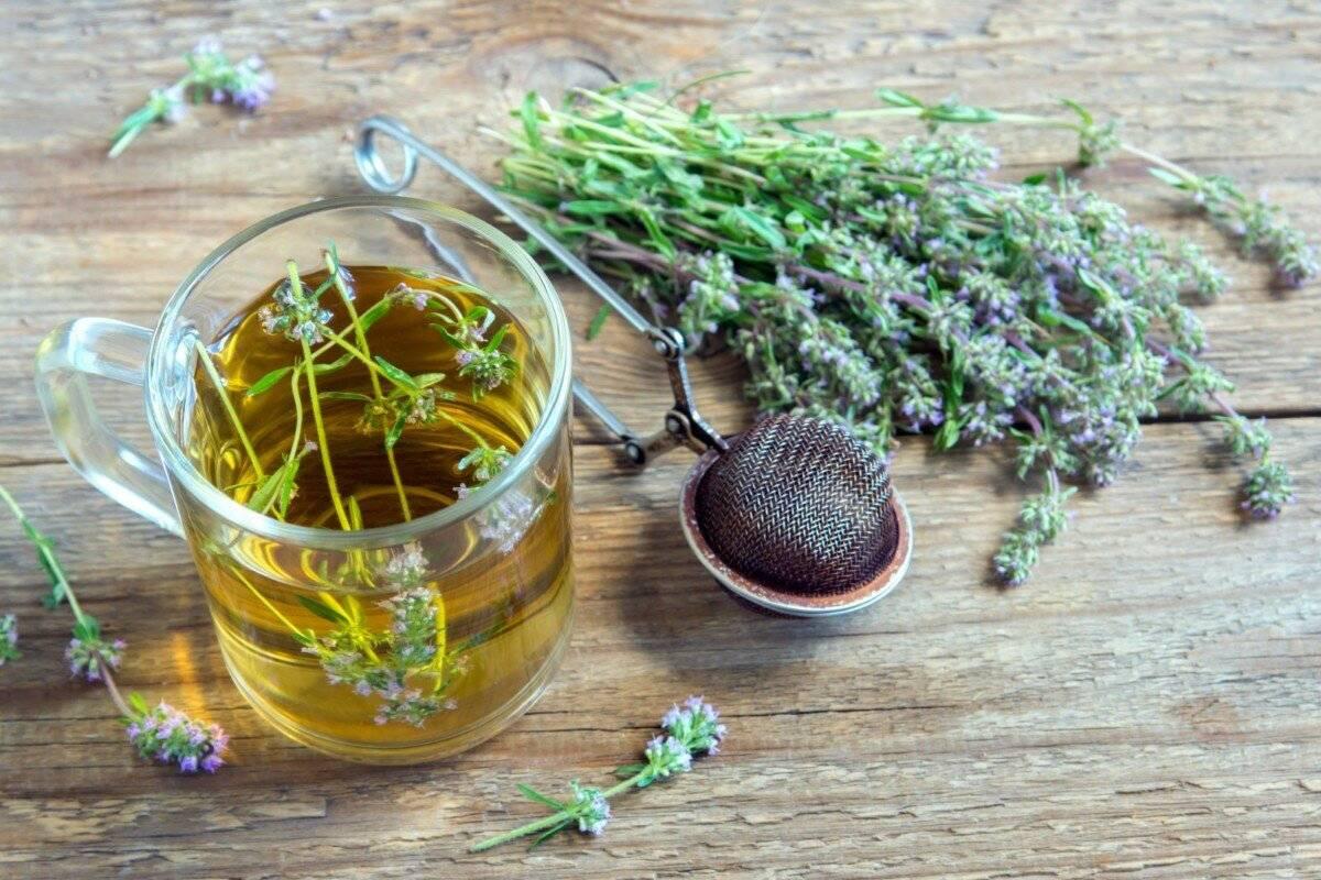Из каких трав можно заваривать чай от кашля