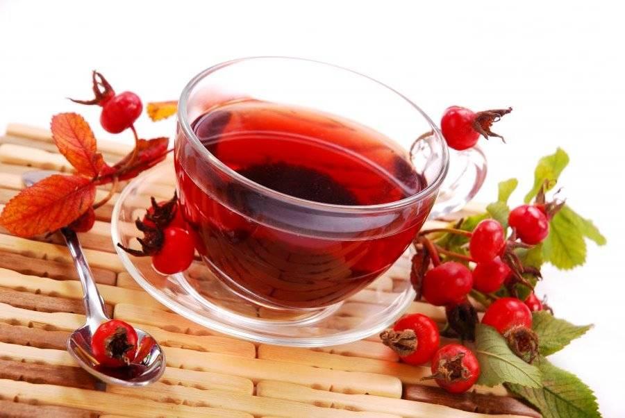 Чай с шиповником: полезные свойства и противопоказания к применению, рецепты из плодов и лепестков цветов, может ли быть вред для здоровья