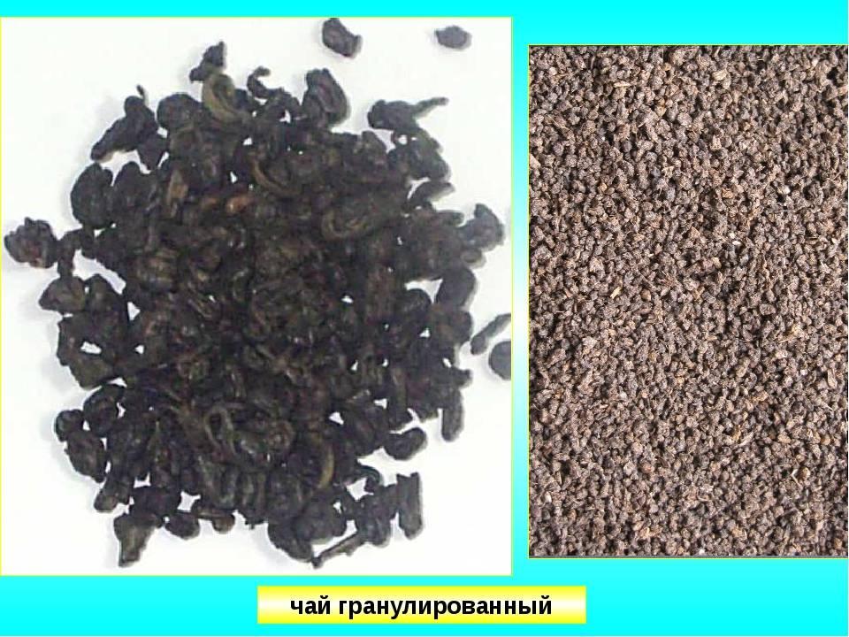 Гранулированный чай: польза и вред для организма.