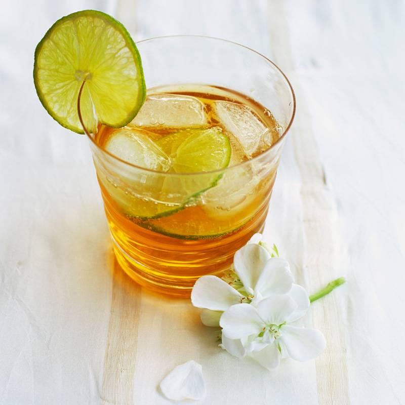 Домашний холодный чай - какой выбрать и как приготовить | как приготовить на webpudding.ru