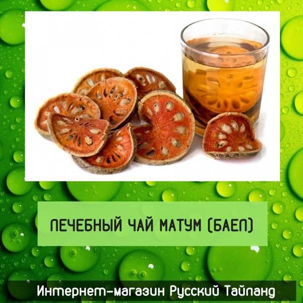 Чай матум: чем полезен и чем вреден   польза и вред