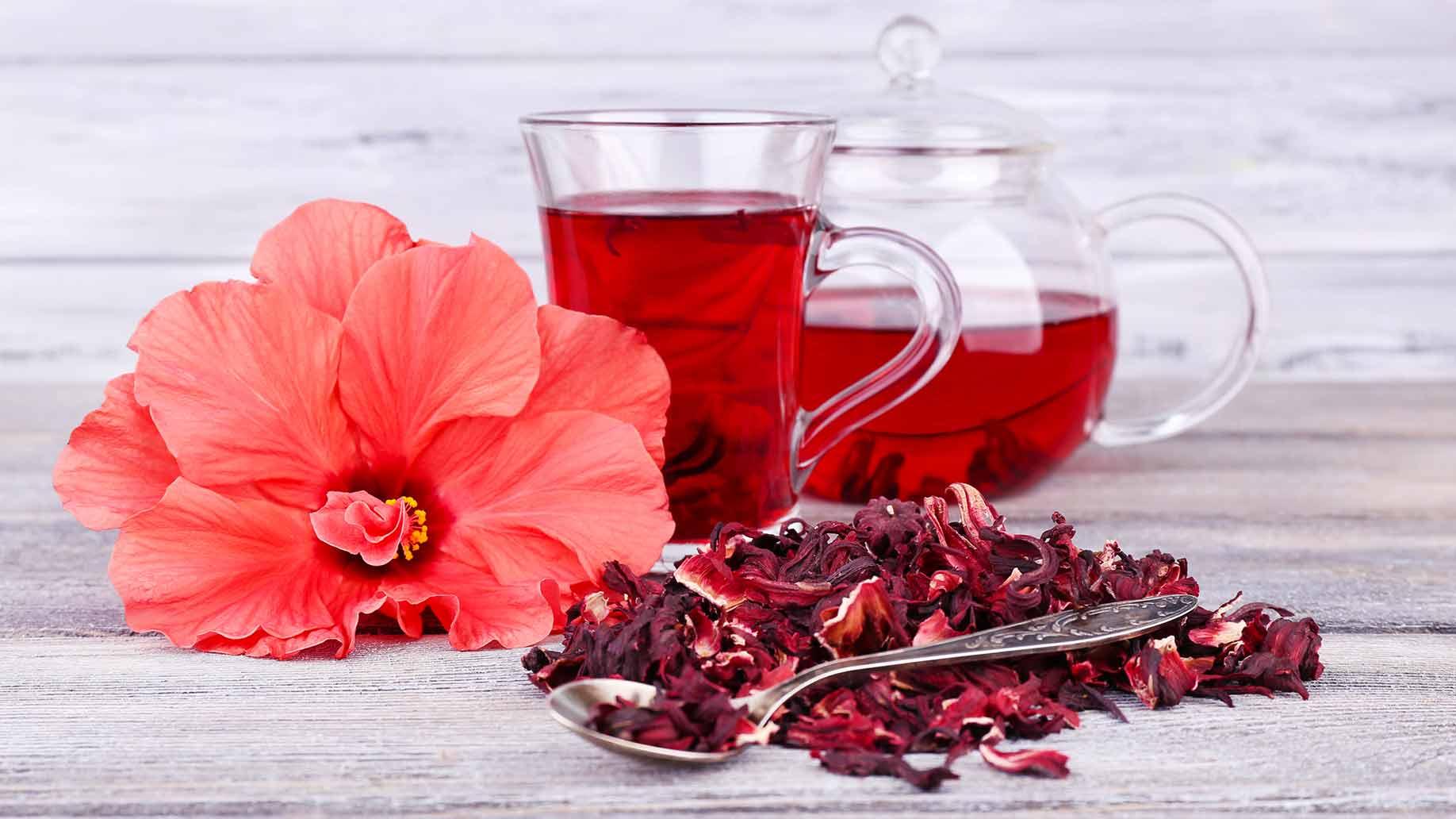 Чайная роза: полезные свойства, рецепты применения и противопоказания