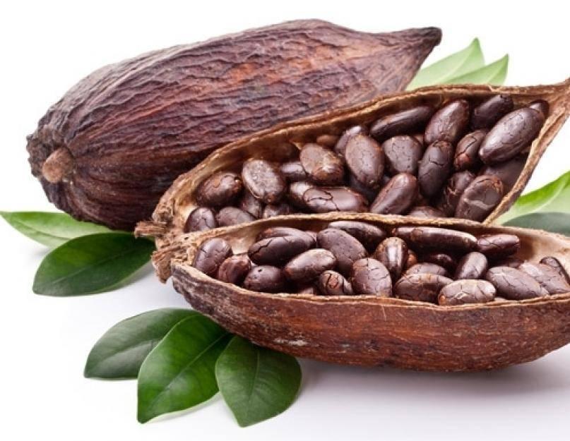 Какао: польза и вред, противопоказания и употребление