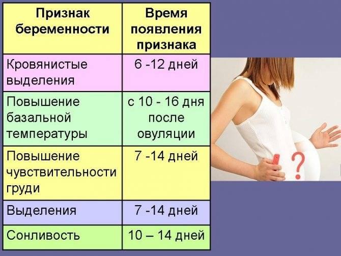Шоколад при беременности: можно или нельзя беременным кушать шоколад, какой продукт лучше употреблять