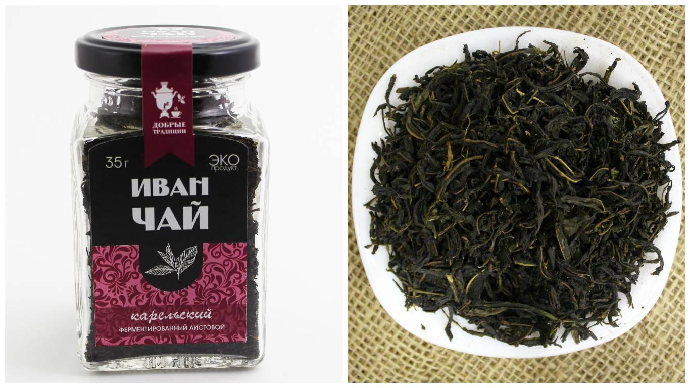 Иван-чай: польза, вред, противопоказания, как заваривать и пить