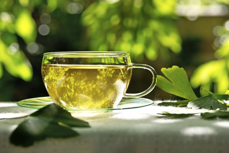 Чай из гинкго билоба: как заваривать, свойства, рецепты - чайгик
