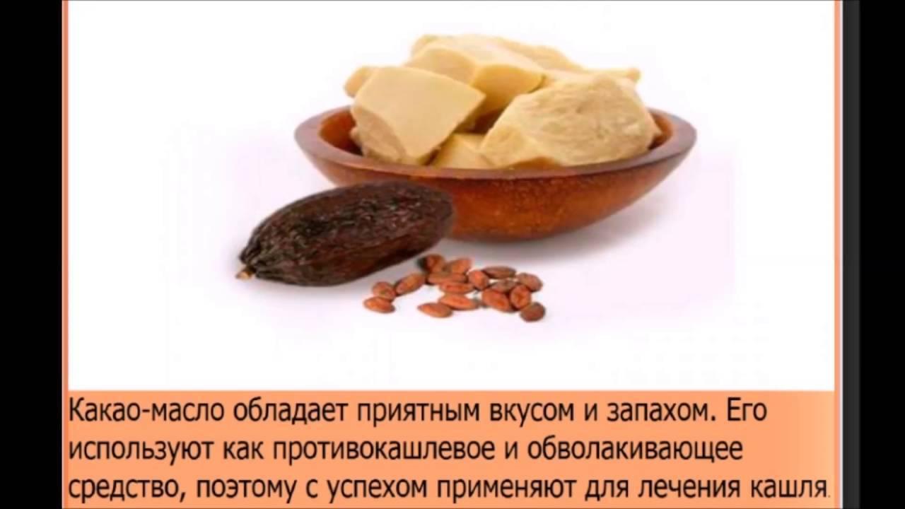 Какао: полезные свойства и противопоказания, лечебное применение, как используют масло какао в медицине для лечения