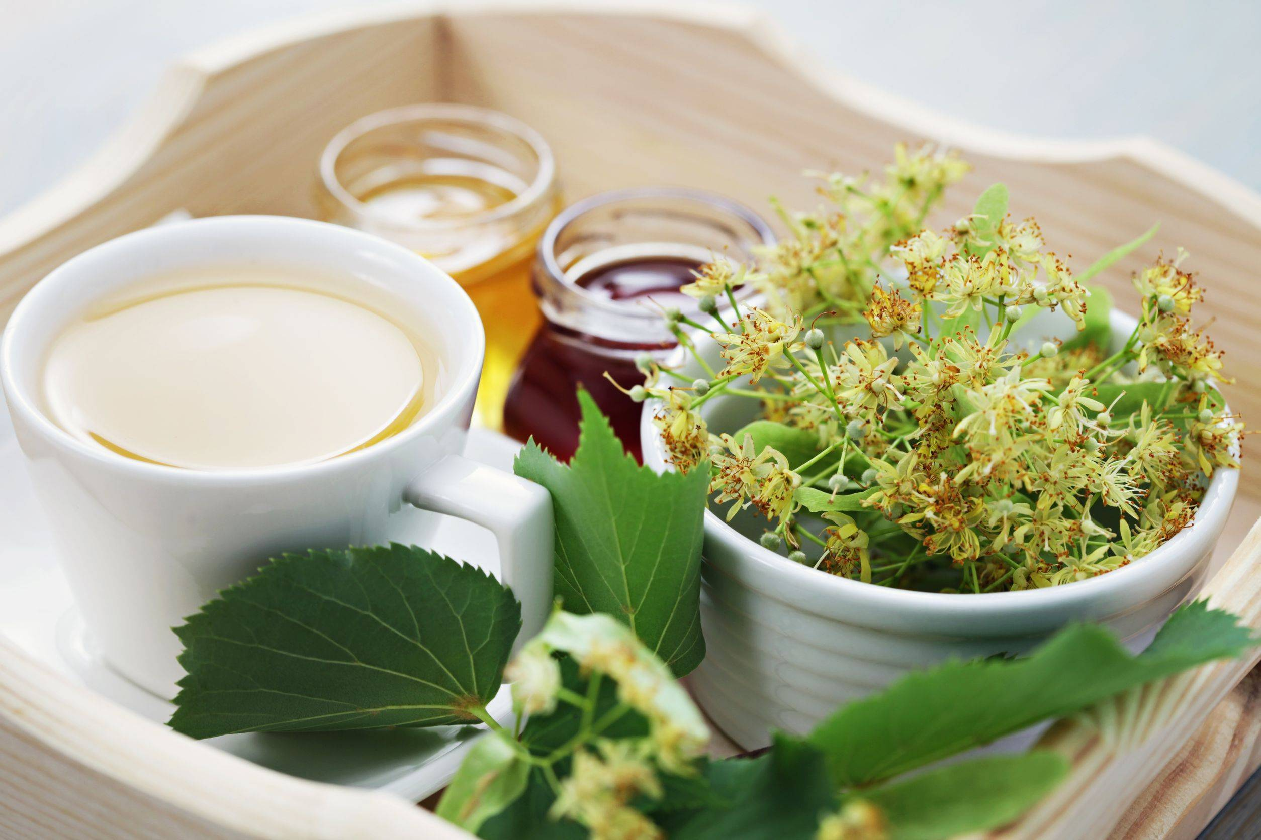 Чай с фенхелем полезные свойства, противопоказания, как заваривать