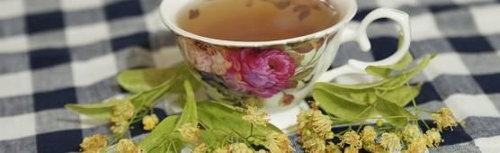 Липовый чай: полезные свойства и противопоказания, польза и вред чая из липы