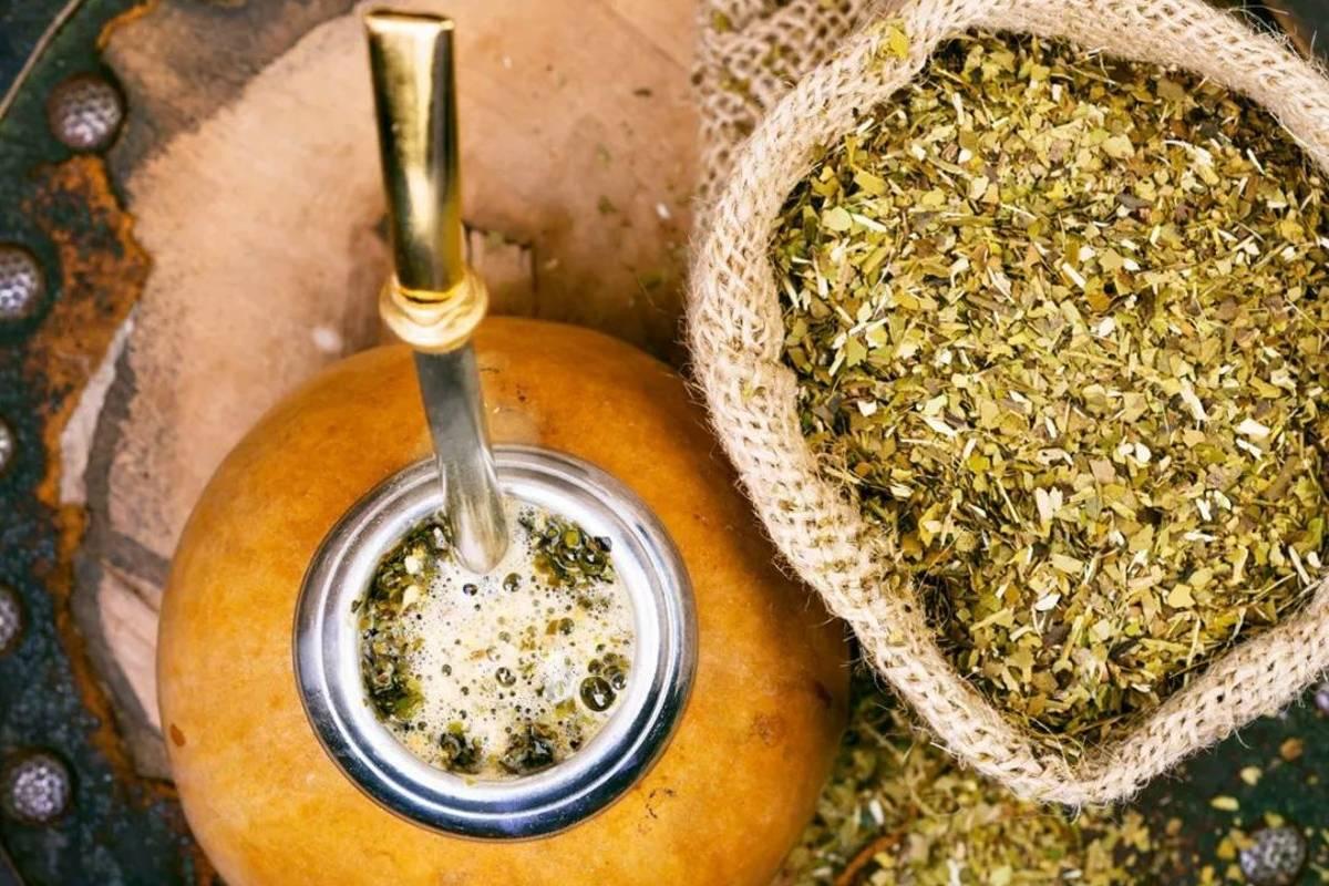 Чай мате - секрет здоровья. польза и вред. как заваривать. полезные свойства и противопоказания. состав
