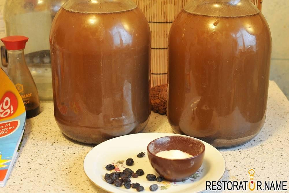 Закваска для кваса в домашних условиях: лучшие рецепты пошагово с фото