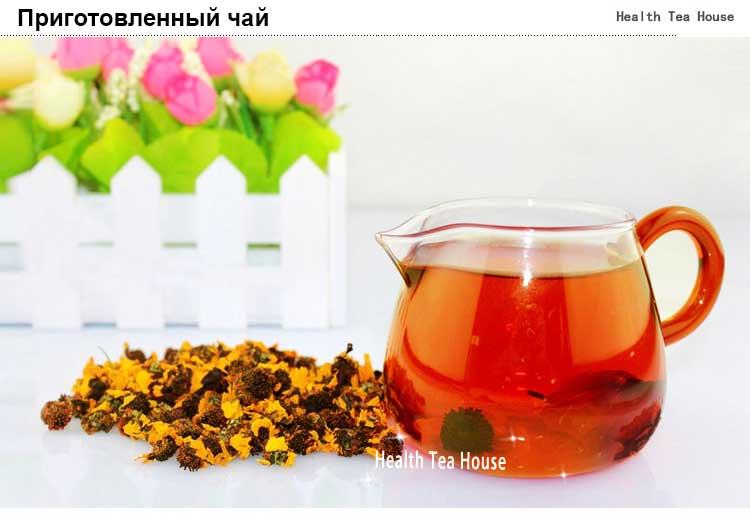 Лечебные свойства и противопоказания хризантемы