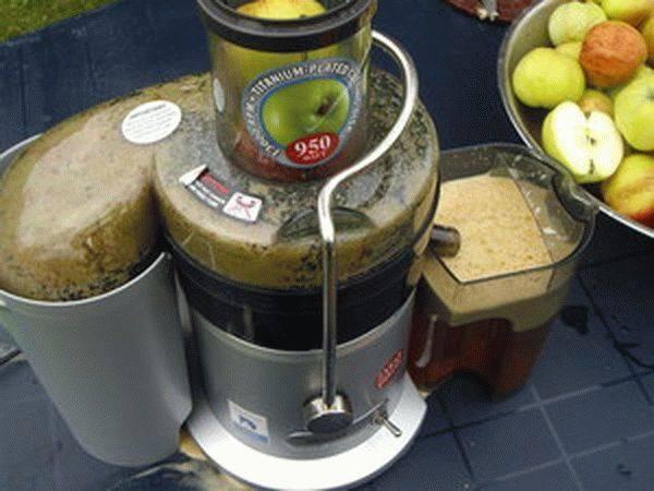 Яблочный сок через соковыжималку в домашних условиях на зиму - 5 рецептов с фото пошагово