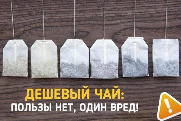 Почему чай в пакетиках опасен для здоровья? - hi-news.ru