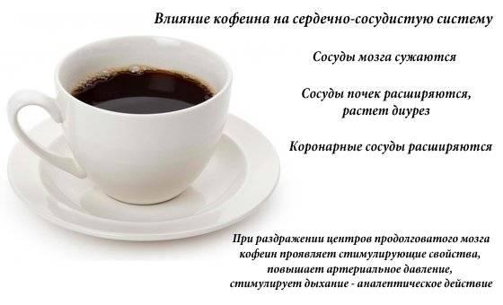 Кофе и давление: как влияет на показатели человека — повышает или понижает, а так же действие растворимого и зернового