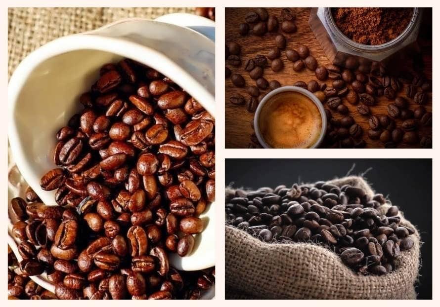 Кофе в зернах, молотый или быстрорастворимый — принципы правильного хранения разных видов кофе