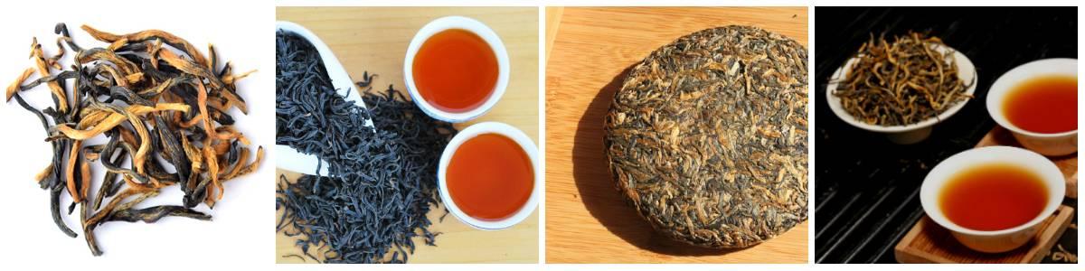 Красный чай: свойства, состав, противопоказания