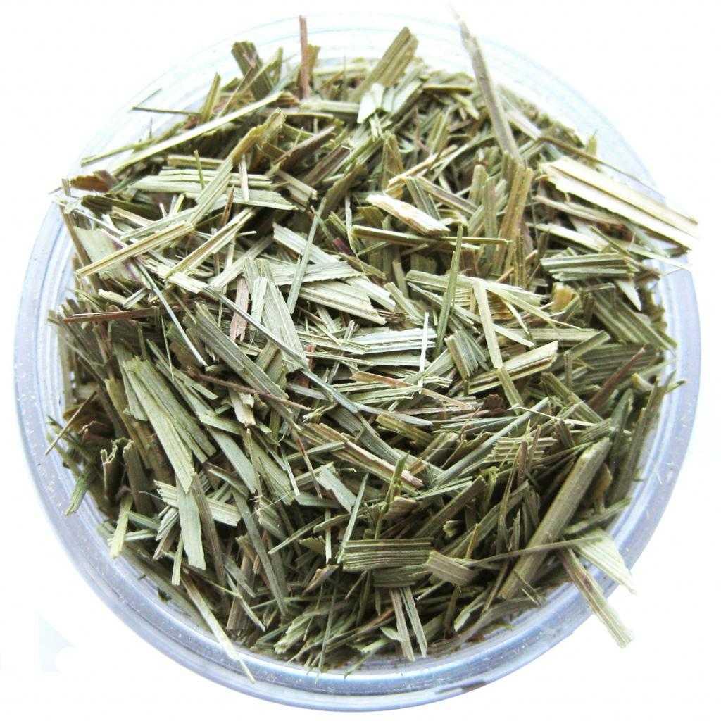 Лемонграсс: полезные свойства и противопоказания лимонной травы