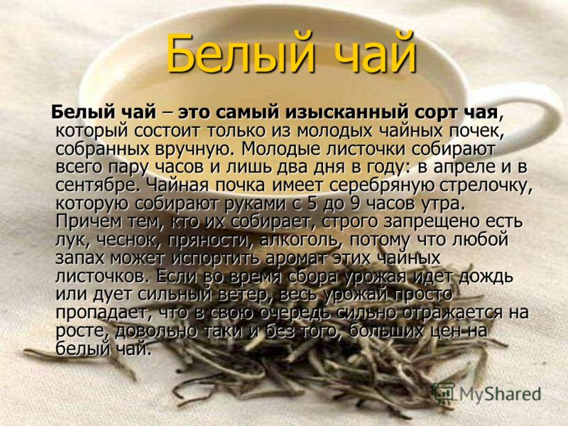 Виды и классификация чая