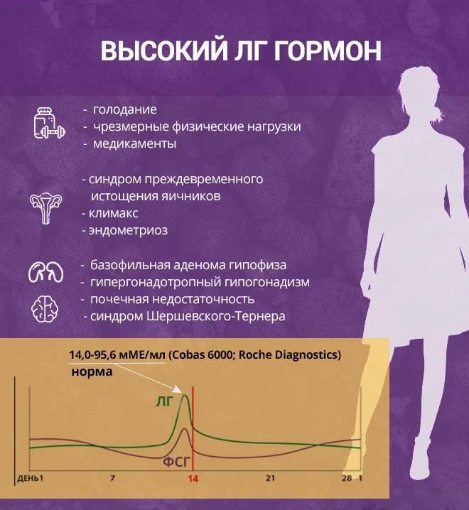 Как кофе влияет на гормоны в мужском и женском организме