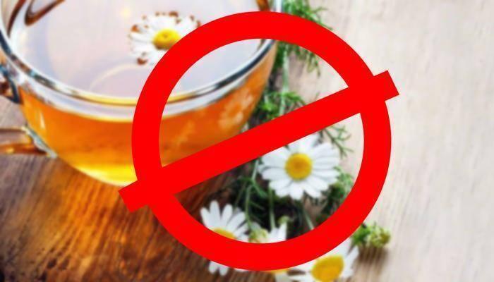 Ромашка при беременности: можно ли пить чай, полоскать горло отваром, подмываться, спринцеваться на ранних сроках, во время 1 и 2 триместра, если нельзя, то почему?