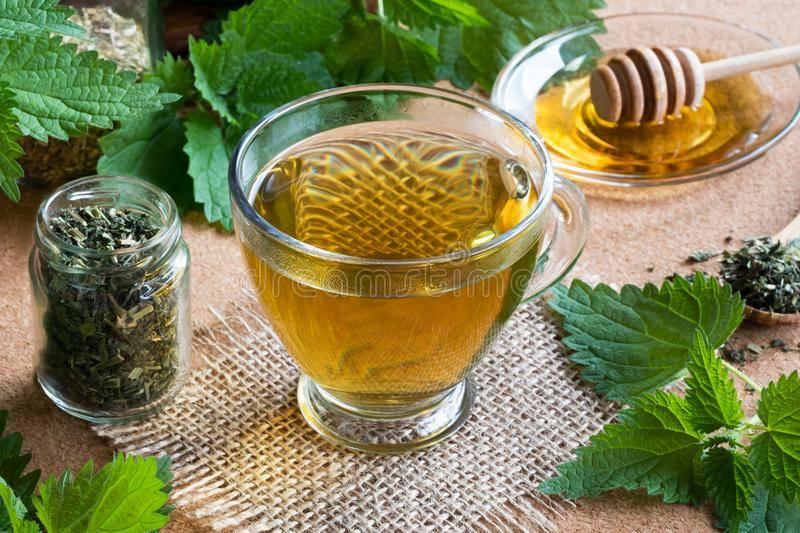 Чем полезен чай из крапивы