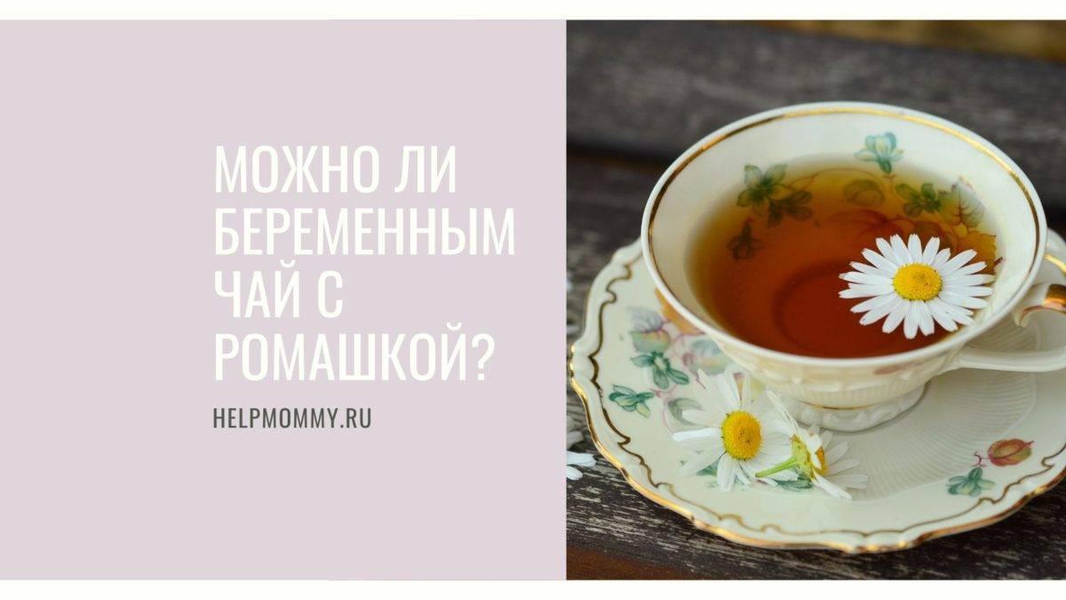 Иван-чай при беременности: можно ли беременным его пить? польза, вред и противопоказания к употреблению на ранних и поздних сроках