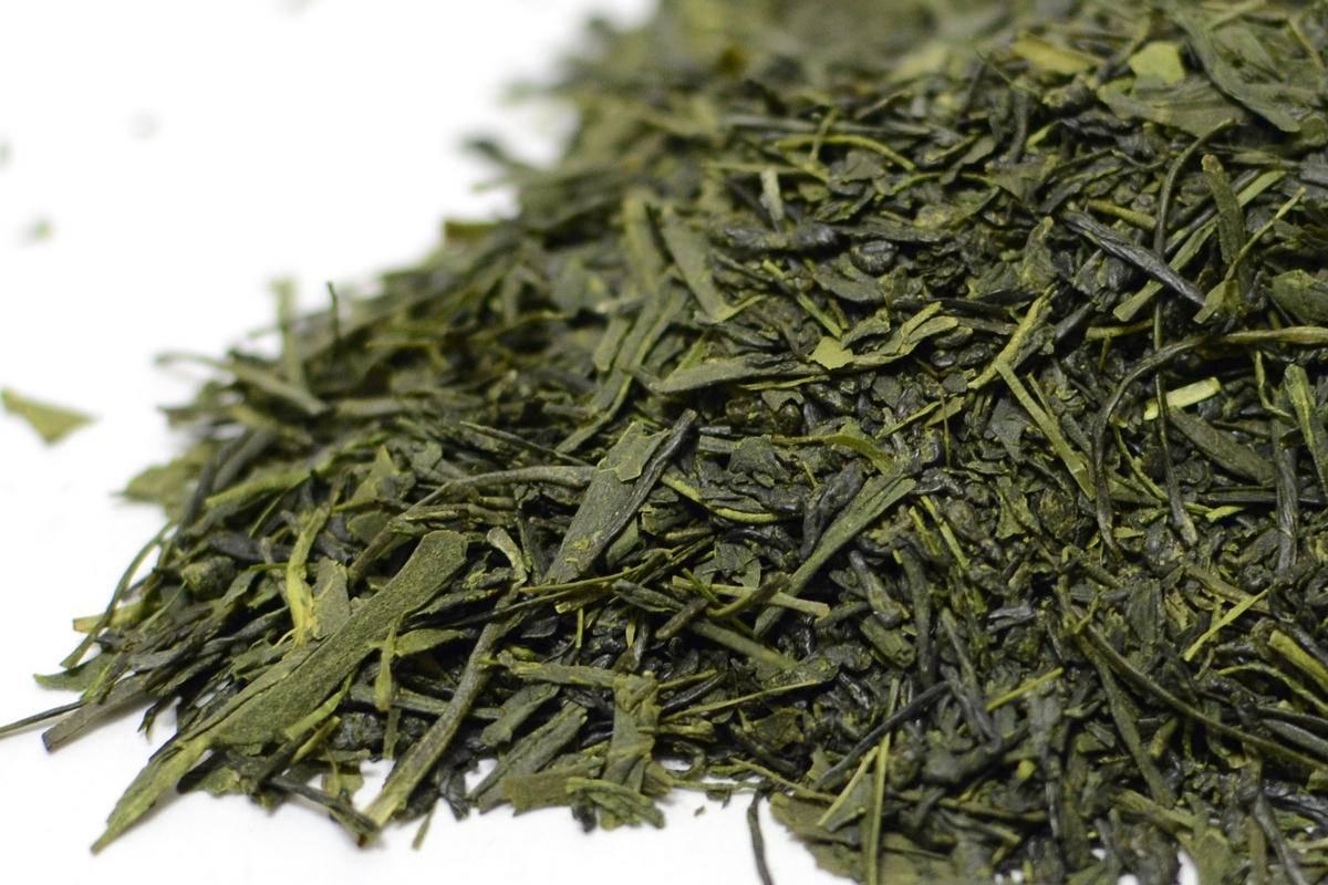Лечебный чай сенча: показания и правильное заваривание – все о меню