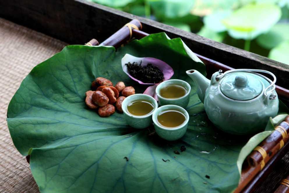 Чай с лотосом из вьетнама польза и вред