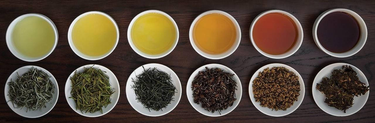5 отличий ферментированного чая от заварки, не прошедшей ферментацию