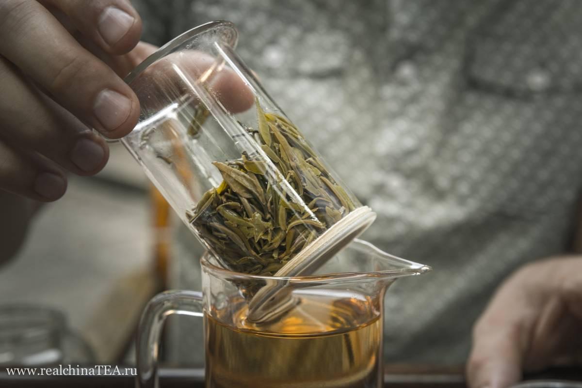Пурпурный чай. антоцианы. цзы я, цзы цзюань и цзы цзянь - teaterra | teaterra
