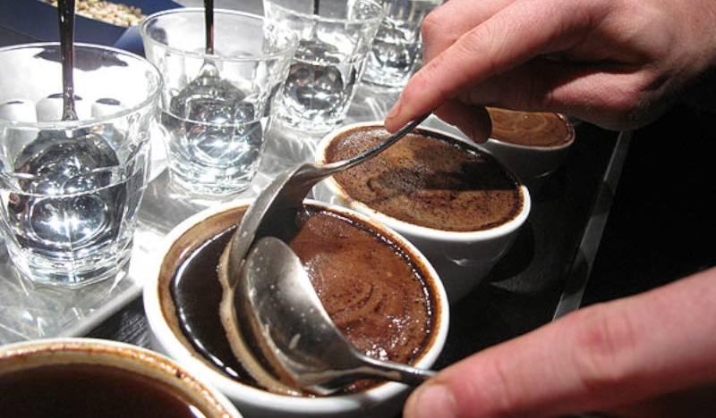 Каппинг - дегустация кофе, что это и как проводится