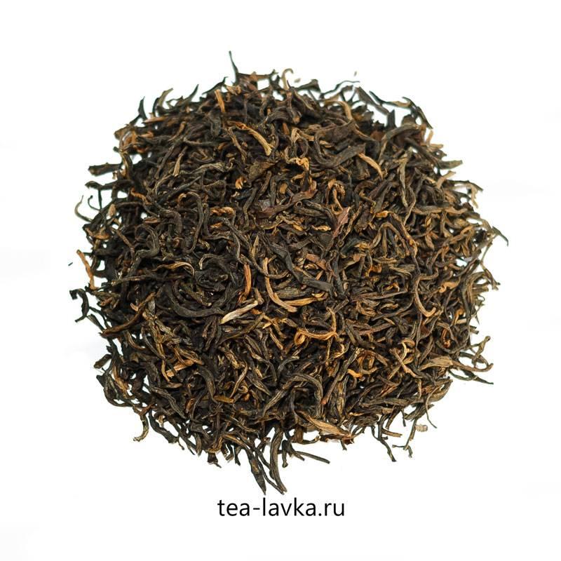 Дянь хун — китайский красный чай: описание, полезные свойста, как заваривать