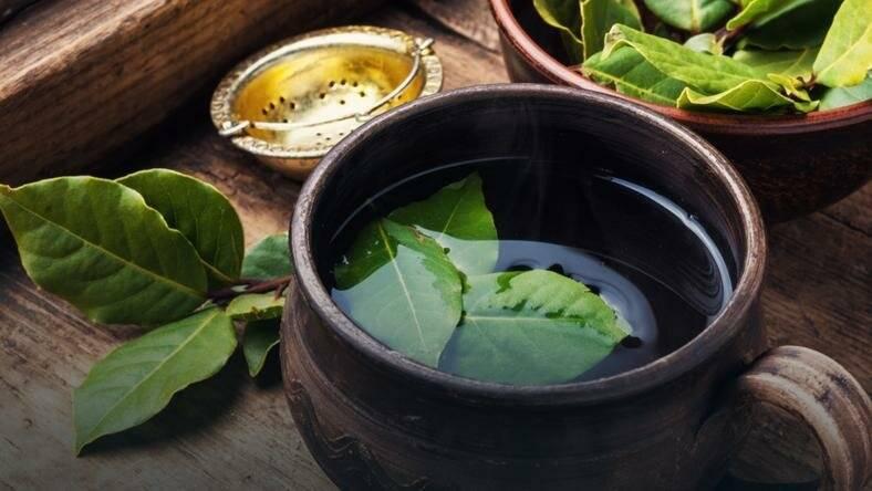 Чай из листьев ежевики: польза и вред