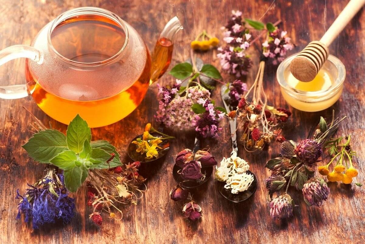 Все о травяном чае: топ 10 самых полезных травяных чаев