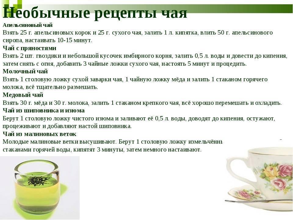 10 вкусных и полезных рецептов травяных чаев
