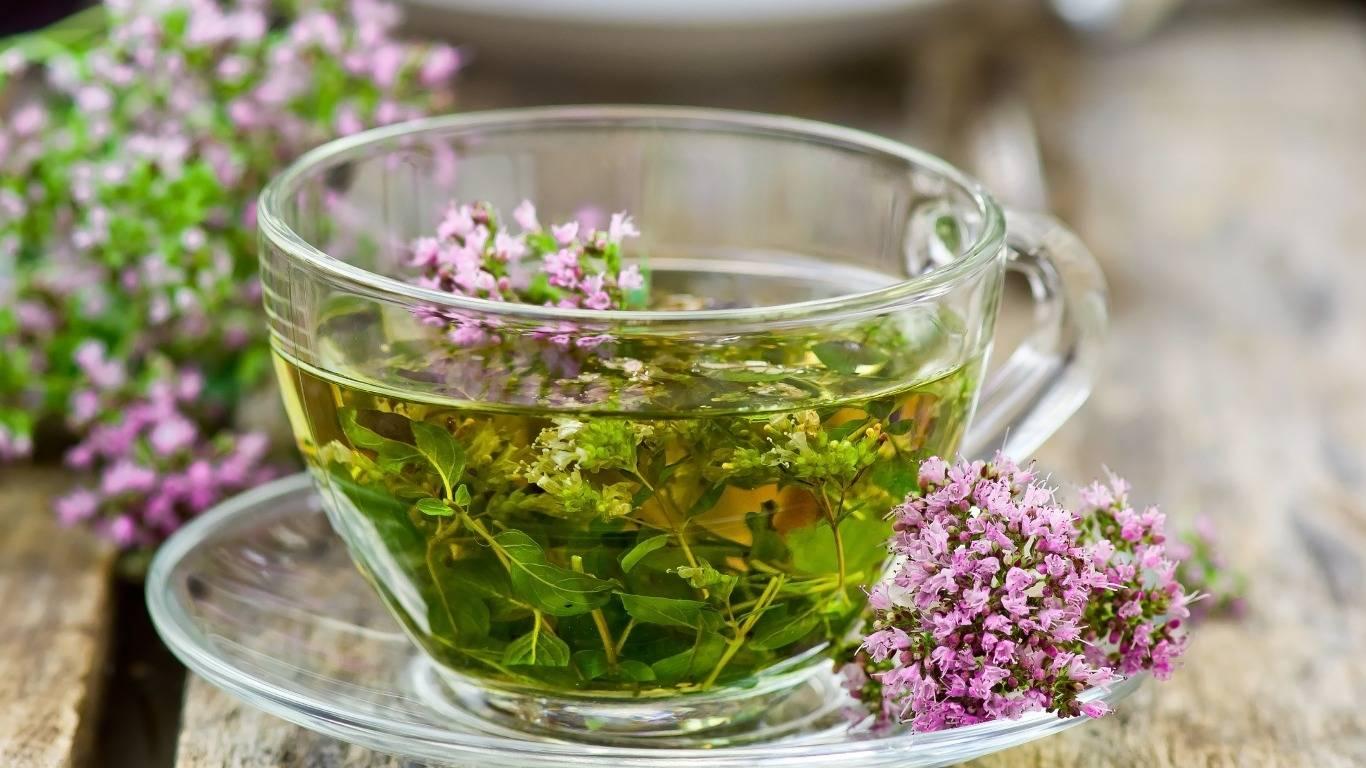 Успокаивающие травы для нервной системы взрослого